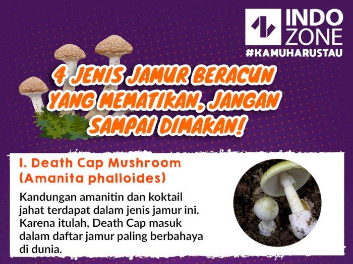 Jenis Jamur Beracun Yang Mematikan, Jangan Sampai Dimakan!