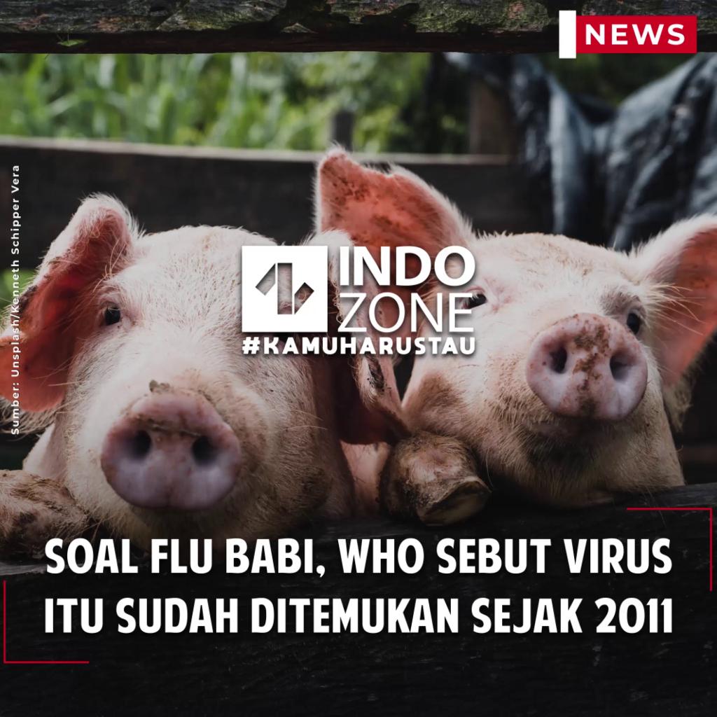 Soal Flu Babi, WHO Sebut Virus Itu Sudah Ditemukan Sejak 2011