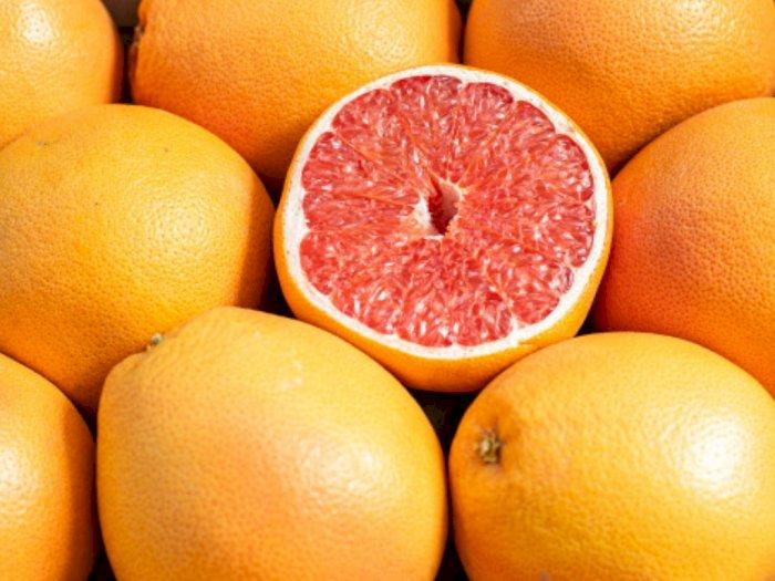 Grapefruit Punya Banyak Manfaat, Bisa Turunkan Berat Badan Juga Lho!