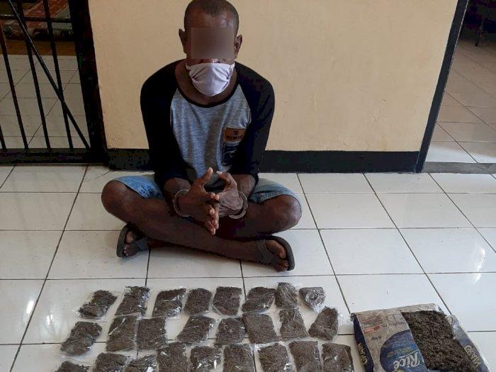 Bawa Sekarung Ganja, WNA Asal Papua Nugini Ditangkap Polisi