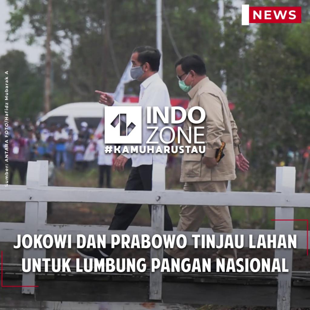 Jokowi dan Prabowo Tinjau Lahan untuk Lumbung Pangan Nasional