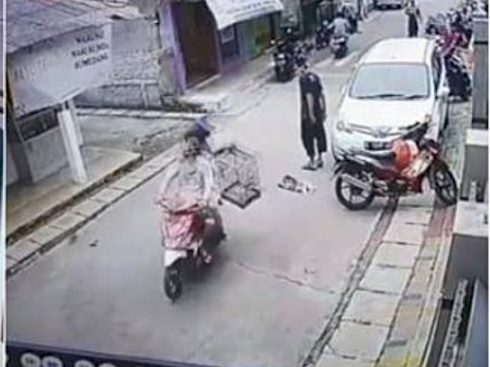 Karma! Pencuri Ini Kehilangan Burung yang Dicolong Usai Senggol Pejalan Kaki