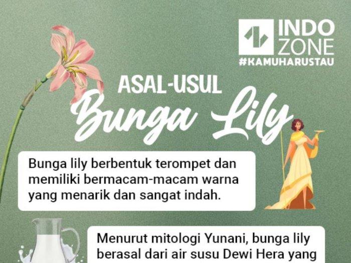 Asal-Usul Bunga Lily