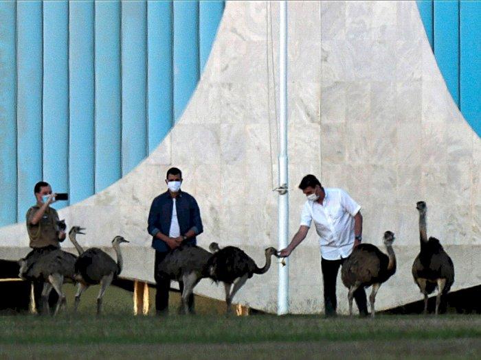 FOTO: Intip Kegiatan Presiden Brasil saat Jalani Karantina Covid-19