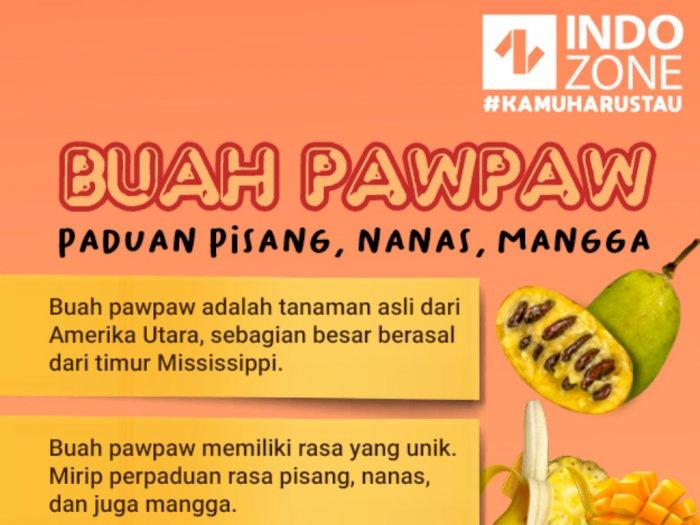 Buah Pawpaw, Paduan Pisang, Nanas, Mangga