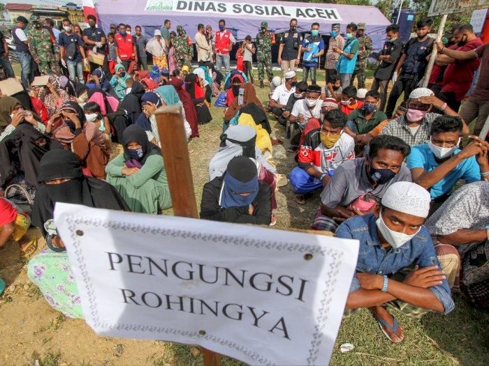 Usai Melakukan Registrasi, 99 Pengungsi Rohingnya di Aceh Resmi Dilindungi UNHCR