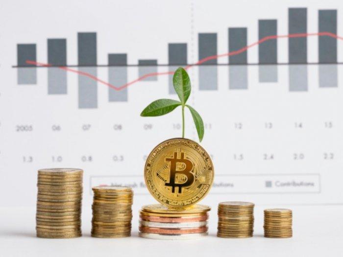 Harga Melejit Hingga Rp162 Juta, Benarkah Investasi Bitcoin Menguntungkan?