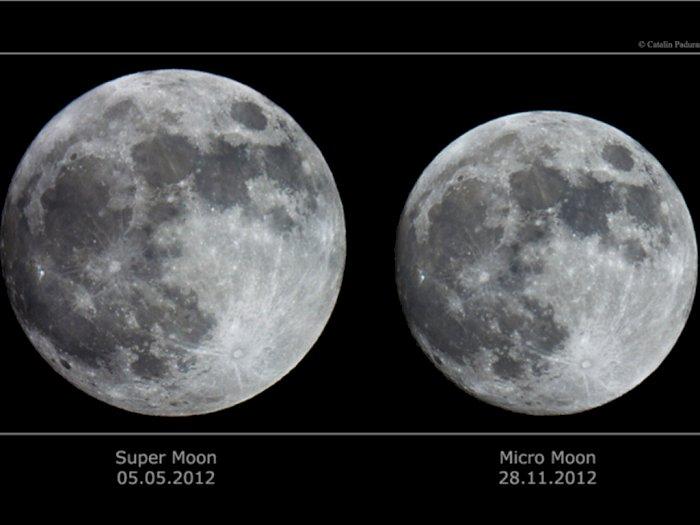 Mengenal Micromoon dan Supermoon, Fenomena Bulan yang Dekat dan Jauh dari Bumi
