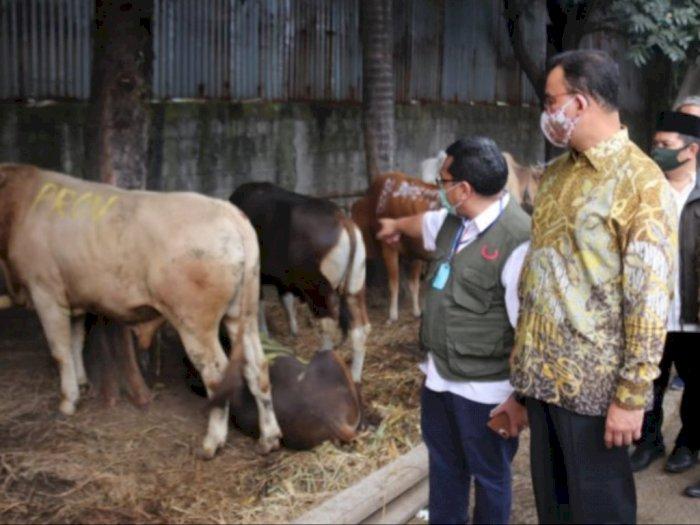 Anies Berharap Daging Kurban yang Dibagikan Sudah Siap Saji ke Warga Kurang Mampu