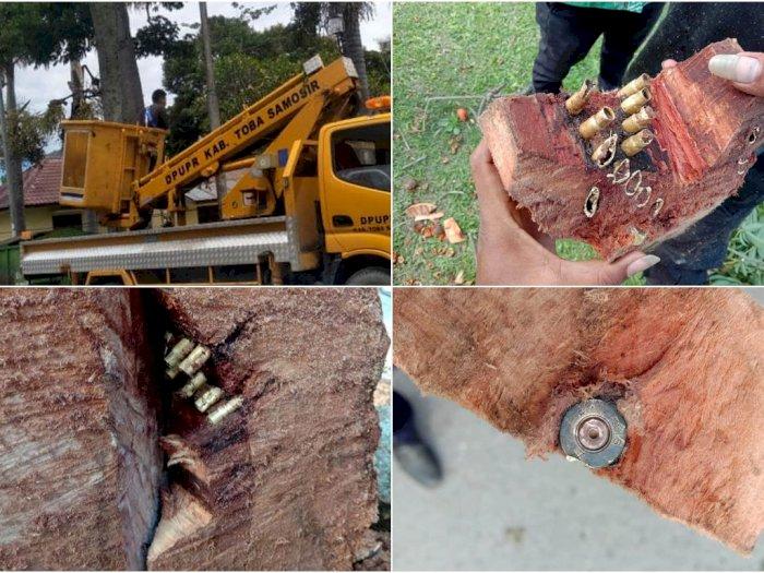 Tebang Pohon Tepi Jalan, Warga Temukan Belasan Selongsong Peluru dalam Batangnya