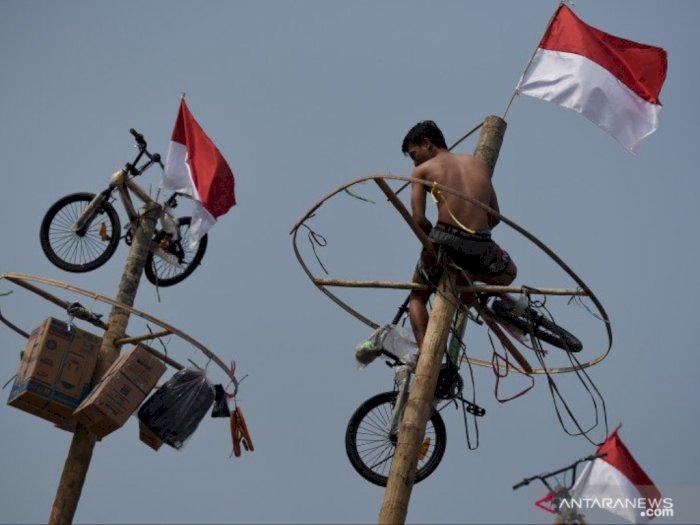 Perlombaan Panjat Pinang di Jakarta Terancam Dilarang Dilakukan karena Corona