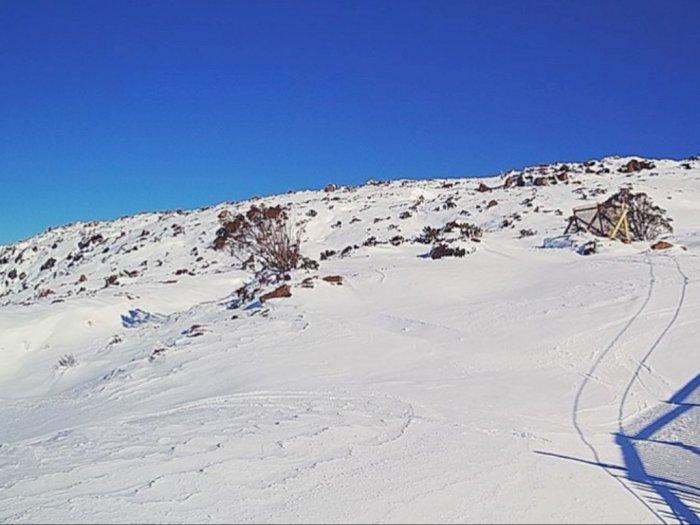 Mengejutkan! Setelah 50 Tahun, Salju Kembali Turun di Tasmania