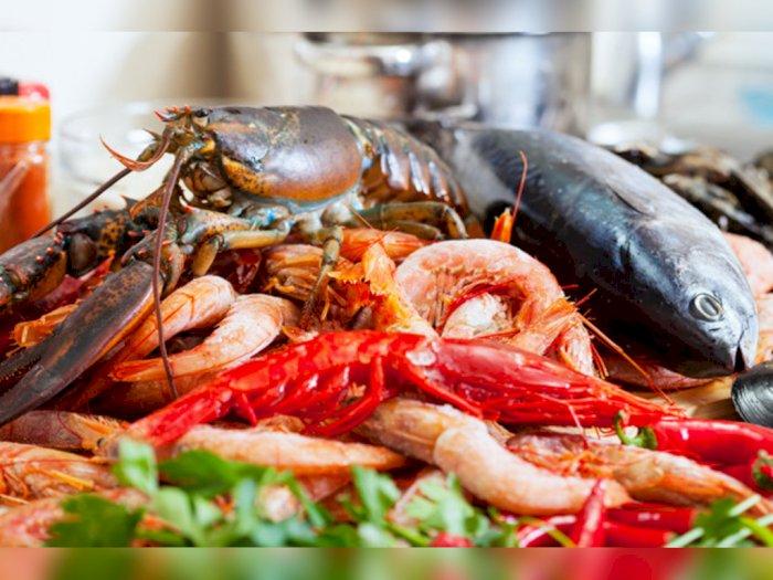 Takut Kolesterol Naik saat Makan Seafood? Yuk Ikuti Tips Sehat Ini