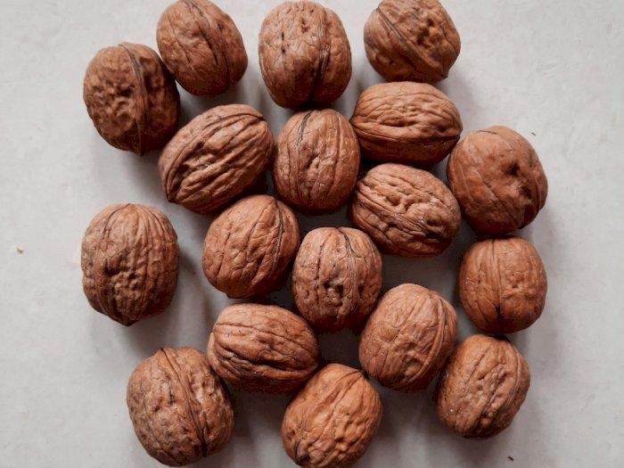 Konsumsi Kacang Kenari Secara Rutin Membantu Terhindar dari Penyakit Jantung