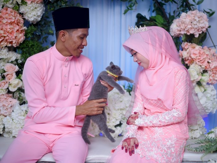 Pasangan Ini Jadikan Kucing sebagai Hantaran Pernikahan, Imut Banget!