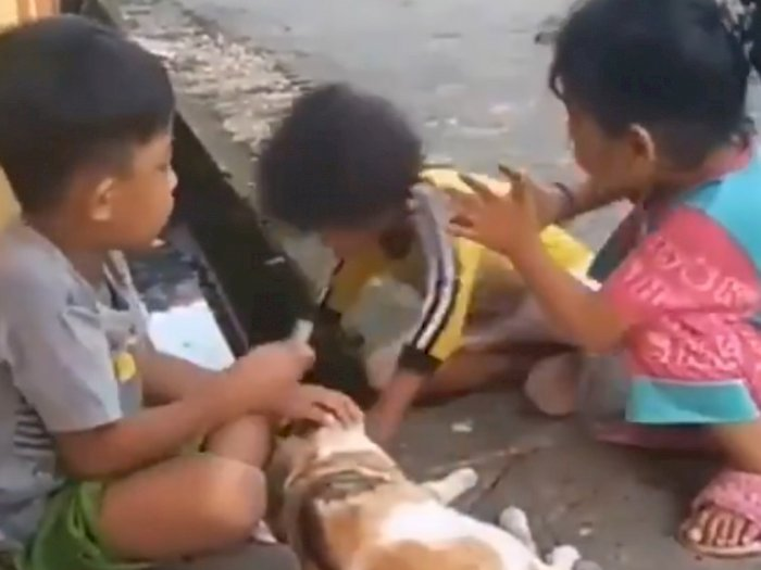 Viral Bocah 6 Tahun Masuk Got, Kepalanya Nyungsep