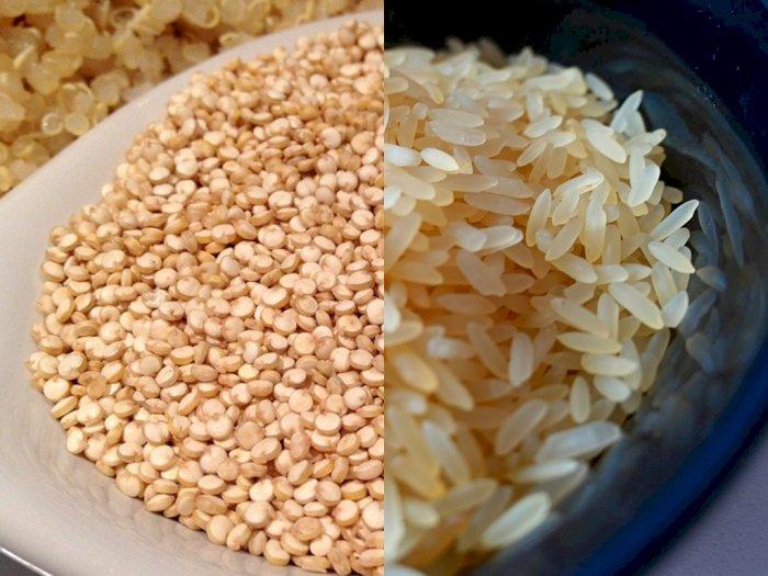 Nutrisi Quinoa vs Nasi yang Menjadi Perdebatan, Mana yang Lebih Sehat?