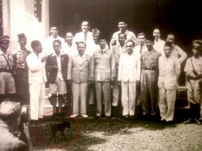 Video Ini Ungkap Ada Anjing dalam Pose Pelantikan Kabinet Pertama Soekarno, Ini Buktinya