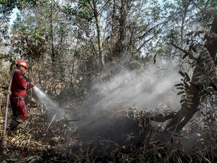 FOTO: Pemadaman Kebakaran Hutan dan Lahan di Pekanbaru