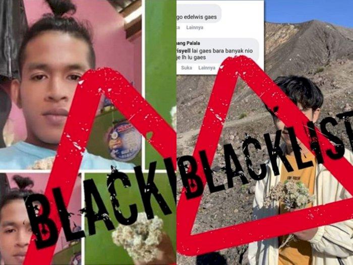 Tak Tahu Malu, Dua Lelaki Ketahuan Petik Bunga Edelweis dari Gunung, Terancam Blacklist