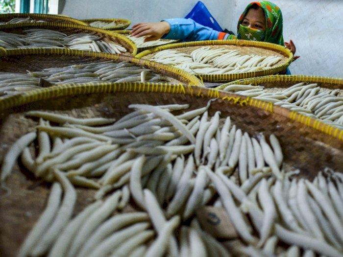 FOTO: UMKM Sebagai Penggerak Ekonomi Rakyat