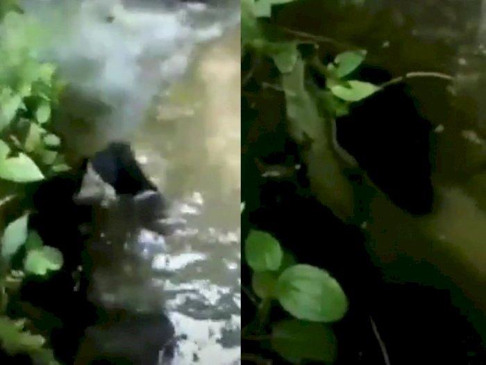 Viral di TikTok, Ada Penampakan Kuntilanak  'Mandi' di Aliran Sungai, Bikin Merinding!