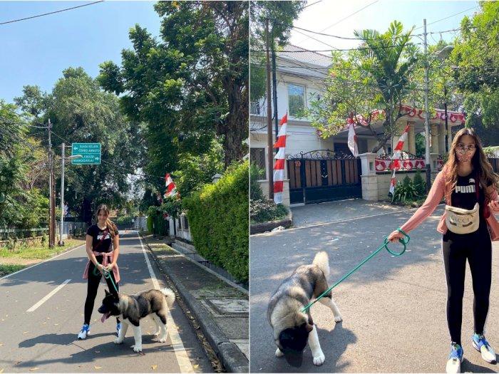 Nia Ramadhani Panen Kritikan Usai Unggah Foto Jalan-jalan Bareng Anjing Peliharaan