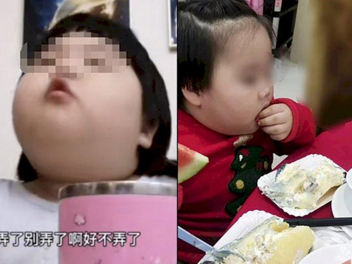 Astaga! Bocah Berusia 3 Tahun Ini Dipaksa Makan Banyak oleh Orangtuanya Demi Konten
