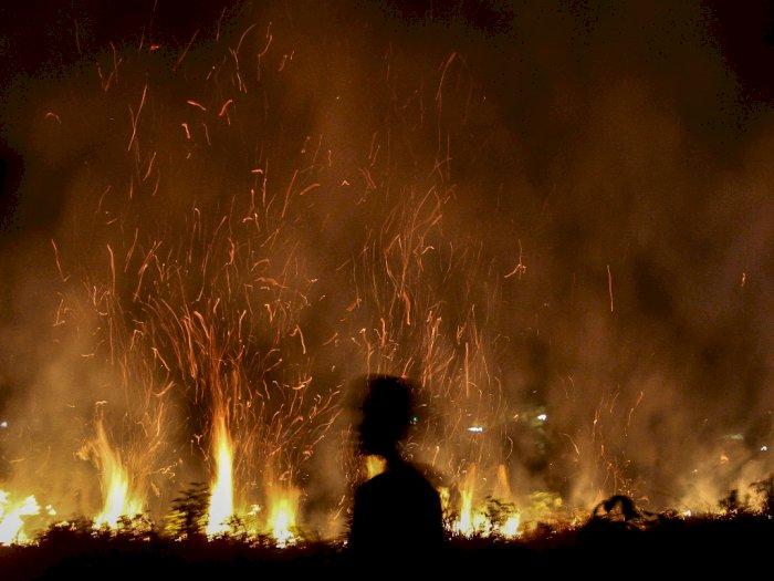 FOTO: Kebakaran Lahan di Pekanbaru