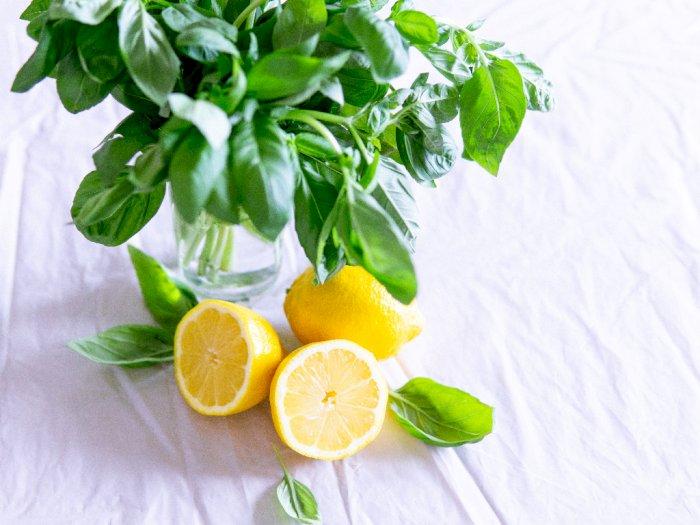 Meningkatkan Pertumbuhan Rambut dengan Lemon, Begini Cara Kerjanya
