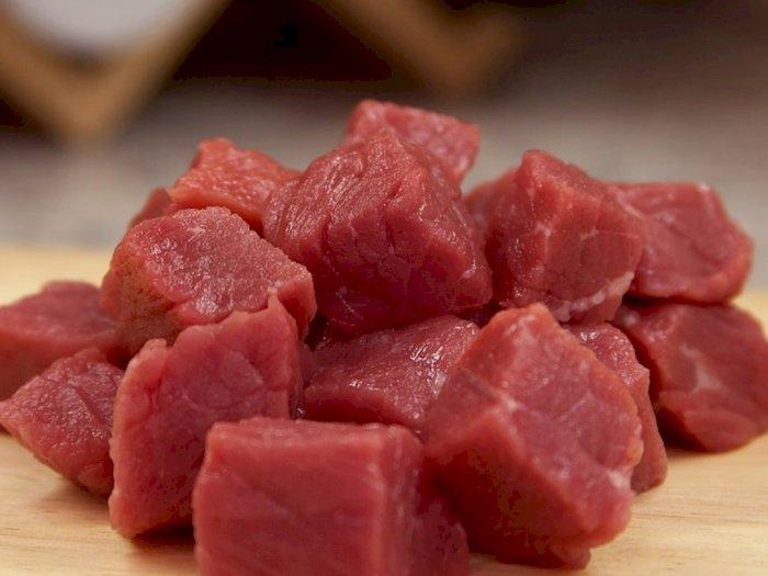 Tips Mencairkan Daging Beku dan Kesalahan yang Umum Dilakukan