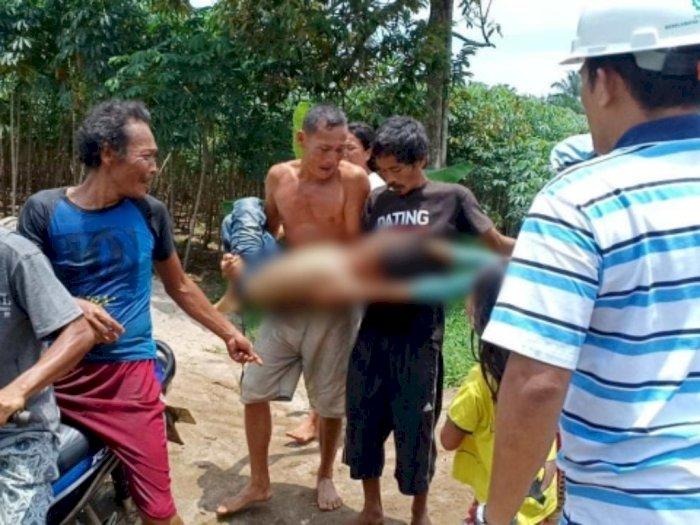 Main-main di Waduk Kebun Kelapa Sawit, 2 Bocah SD di Sergai Tewas Tenggelam