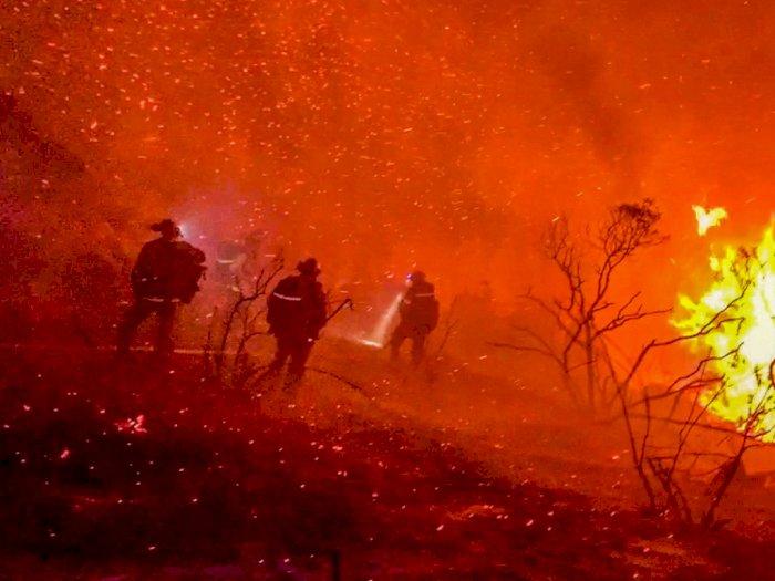 FOTO: Petugas Pemadam Kebakaran Bekerja untuk Memadamkan Api di Alpine, California