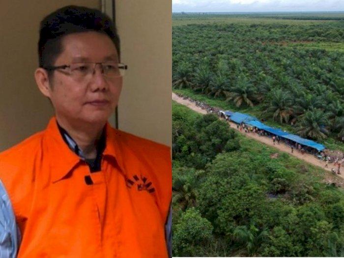 Hakim Vonis Bebas Terdakwa Korupsi Alih Fungsi Hutan Riau, Begini Sikap KPK