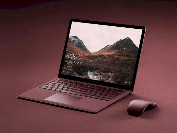 Microsoft Kemungkinan Bakal Rilis Surface Laptop yang Lebih Terjangkau