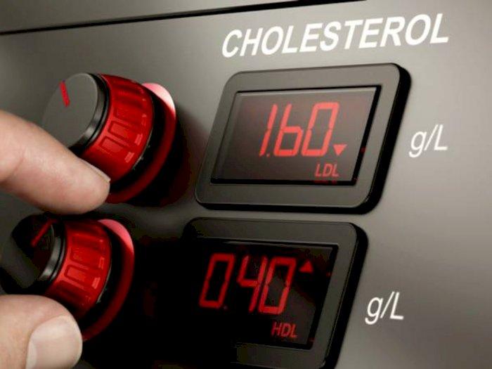 Masukkan 3 Makanan Ini Dalam Diet Kamu Membantu Menurunkan Kadar Kolesterol