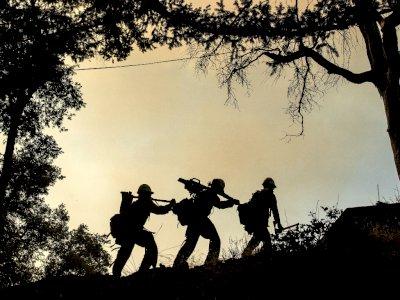 FOTO: Perjuangan Petugas Pemadam Kebakaran Mempertahankan Observatorium Mount Wilson