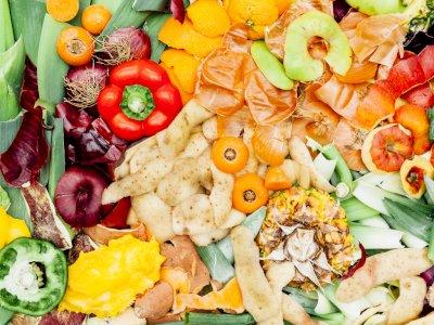 Tips Mengurangi Limbah atau Sampah Sisa Makanan yang Ada di Rumah