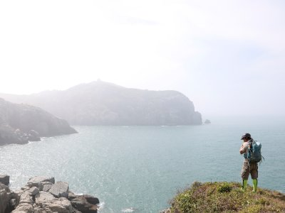 FOTO: Pemburu Tanaman Taiwan Berlomba Mengumpulkan Spesies Langka
