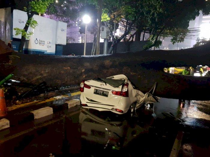 Akibat Hujan Angin Semalam, Sebuah Mobil di Jakpus Ringsek Tertimpa PohonTumbang