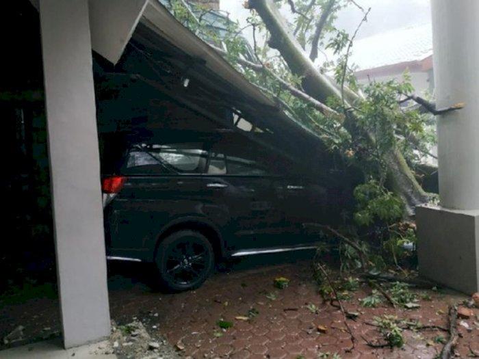 Hujan Lebat Guyur Kota Medan, Kantor BBKSDA Sumut Rusak Tertimpa Pohon Tumbang