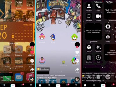 Sejumlah Pengguna iOS 14 Pamer Tampilan Widgets Mereka di TikTok