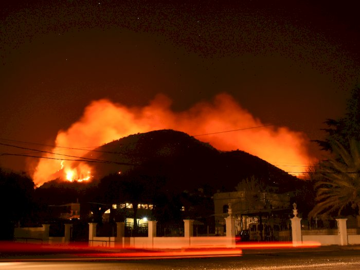 FOTO: Kebakaran Hutan di  Argentina