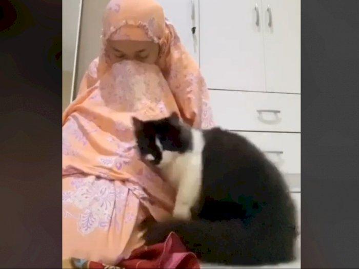 Pura-pura Nangis di Depan Kucing Peliharaan, Reaksi si Kucing Bikin Meleleh