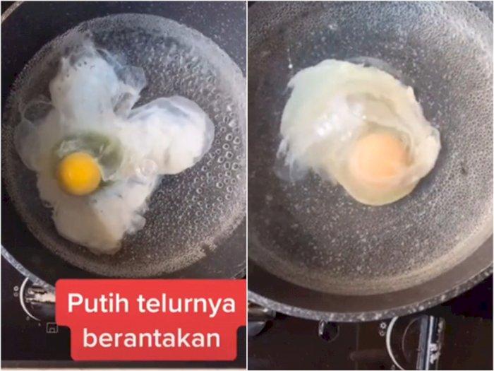 Siapa yang Baru Tahu, Ternyata Begini Cara Rebus Telur jadi Makin Rapi dan 'Berisi'