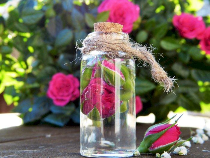 4 Manfaat Air Mawar untuk Kulit dan Rambut