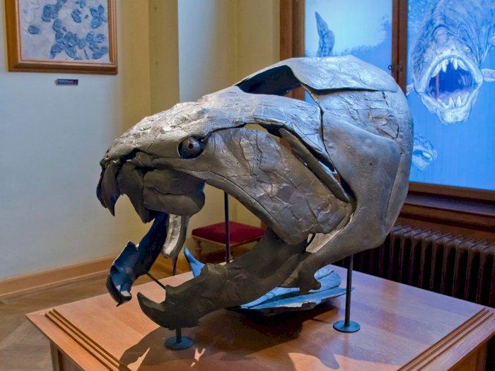 Mengenal Dunkleosteus, Predator Prasejarah yang Ganas