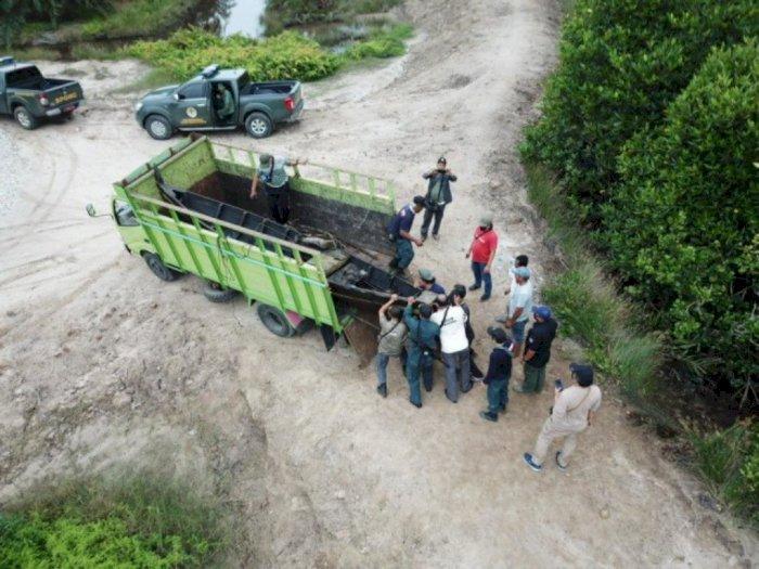 Ketahuan Babat Hutan Bakau di Langkat, Pria Ini Langsug Dijebloskan ke Penjara