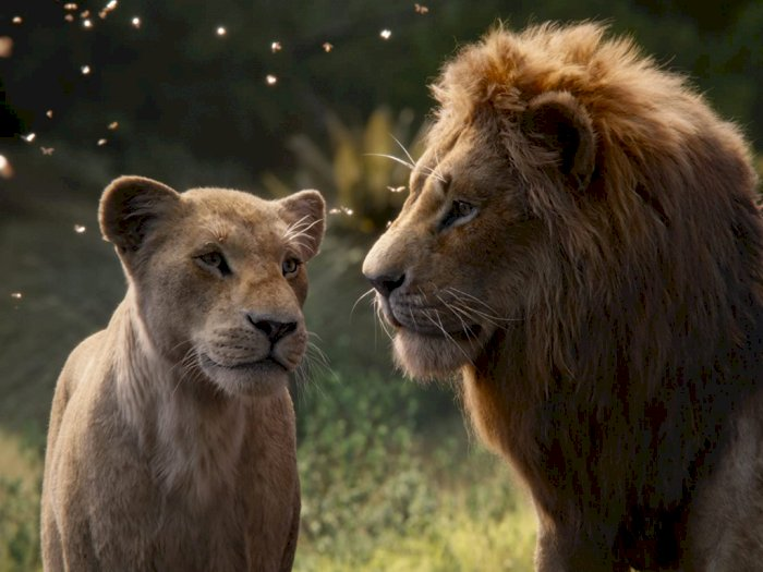 "Prekuel ""The Lion King"" Dalam Pengerjaan Sutradara Barry Jenkisn"