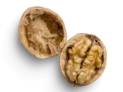 Kacang Kenari, Kacang Berbentuk Otak yang Padat Nutrisi
